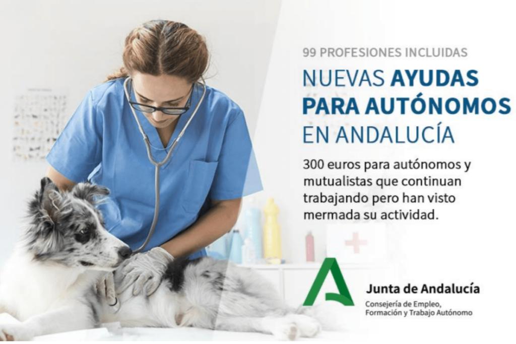 nuevas ayudas para autónomos en Andalucía